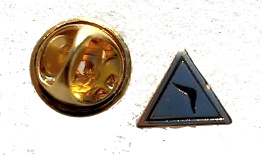 14th Degree Small Pin Golden Finish
